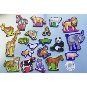 Animals Wooden Magnet in a Box