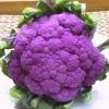 (Big Pack) กะหล่ำดอกสีม่วง - Purple Cauliflower