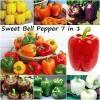 ชุดรวมพริกหวานใหญ่ - Sweet Pepper Set 7 in 1