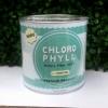 คลอโรมิ้นต์ คลอโรฟิลล์ Chloro Mint ChloroPhyll ขจัดสารพิษในร่ายกาย ผอมลงเร็ว โปร 350 บาท