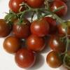 มะเขือเทศเชอรี่สีน้ำตาล - Chocolate Cherry Tomato