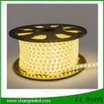 ไฟเส้น LED แบบแบน ROPELIGHT SMD 5050/8mm AC 220v Warm White ยาว100เมตร