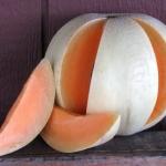 เมล่อน ฮอนนี่ดิว เนื้อสีส้ม - Honeydew Melon Orange Flesh