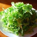 สลัดแทงโก้ - Tango Lettuce