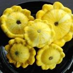 ฟักทองสครอช จานบินสีเหลือง - GOLDEN BUSH SCALLOP SQUASH