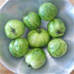 มะเขือเทศม้าลายสีเขียว - Green Zebra Tomato