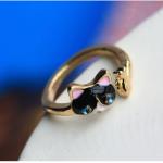 แหวน ลูกแมว กับ ปลา