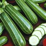 ฟักทองสครอสซูชินี่ผิวลาย - Italian striped Zucchini Squash