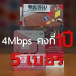 True Unlimited 4Mbps 1Year 5 เบอร์