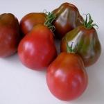 มะเขือเทศทรัฟเฟลญี่ปุ่น - Japanese Trifele Tomato
