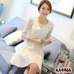 Elegant lace dressเดรส สั้นแขนยาว