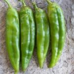 พริกเขียวใหญ่ อนาไฮม์ - Anaheim Pepper