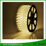 ไฟยาง LED Rope Light 36 leds แบบกลม 3 แกน แสง Warm white