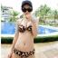 SM-V1-066 ชุดว่ายน้ำแฟชั่น คนอ้วน เด็ก ดารา thumbnail 3