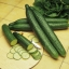 แตงกวา เทเลกราฟ - Telegraph Cucumber thumbnail 5