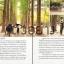 เกาหลี (โซล) เล่มเดียวเที่ยวได้จริง thumbnail 8