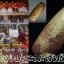 ยาแดงปะถะมะสิทธิ โดย ครูบาชัยมงคล วัดไทรย้อย thumbnail 1