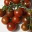 มะเขือเทศเชอรี่สีน้ำตาล - Chocolate Cherry Tomato thumbnail 1