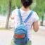 กระเป๋าเป้แบบน่ารัก สีสันสดใส จะไว้สะพายหลังหรือแบบคาด thumbnail 4