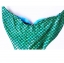 NF007 ชุดว่ายน้ำหางนางเหงือก หางปิด สามารถใส่ฟินได้ (ในชุดไม่รวมฟิน) 1 ชุด มี 3 ชิ้น - ผ้าเงาลายเกล็ด thumbnail 9