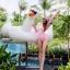 SM-V1-498 ชุดว่ายน้ำแขนยาวสีชมพูขาว เสื้อเปิดร่องอกเซ็กซี่ (เสื้อแขนยาว+บิกินี่) thumbnail 2