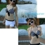 SM-V1-206 ชุดว่ายน้ำแฟชั่น คนอ้วน เด็ก ดารา thumbnail 4