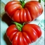 มะเขือเทศซาโปติค - Zapotic Pleated Tomato thumbnail 3