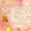 การ์ดแต่งงานหน้าเดียว(92301-92306-92308) thumbnail 1