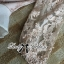DR-LR-220 lady Elisa Classy Glam Embellished Insert Lace Dress in Nude thumbnail 15