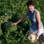 (Whole 1 Oz) แตงโมยักษ์ พันธุุ์แบล็คไดมอนด์ - Black Dimond Giant Watermelon thumbnail 3