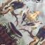 Lady Natalie Natural Wild Birdie Printed Shirt Dress L255-69B07 thumbnail 10
