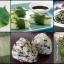 ชิโซะเขียว ซองละ 20 เมล็ด thumbnail 1