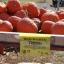 ฟักทองสีแดง - Red warty thing pumpkin thumbnail 2