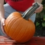 ฟักทองฮาโลวีน พันธุ์วอฟ - Wolf pumpkin thumbnail 1