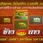 ช้างเสพนาง ตำหรับล้านนา ครูบาชัยมงคล วัดไทรย้อย thumbnail 1