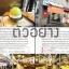 เกาหลี (โซล) เล่มเดียวเที่ยวได้จริง thumbnail 5