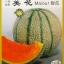 เมล่อน ไมออร์ - Maiour Japanese Melon F1 thumbnail 1