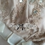 DR-LR-220 lady Elisa Classy Glam Embellished Insert Lace Dress in Nude thumbnail 14