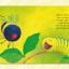 The Crunching Munching Caterpillar - Picture Book ad CD Set หนังสือนิทานพร้อมซีดีประกอบ หนอนน้อยกินจุ Jack Tickle thumbnail 5
