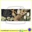 Story Book & DVD : Owl Babies : Martin Waddell & Patrick Benson หนังสือนิทานภาพพร้อมดีวีดี Walker Books thumbnail 2