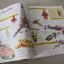 DK LEGO STAR WARS - The Visual Dictionary เลโก้สตาร์วอร์ พร้อมมินิฟิกร์ Luke Skywalker Minifigure thumbnail 5