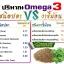 งาขี้ม้อน-สกัดเย็น มี Omega-3 มากกว่าน้ำมันปลา 2-3 เท่า บรรจุ 60 แคปซูล thumbnail 3