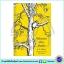 Winnie the Pooh : A. A. Milne & E. H. Shepard : 4 Books Classic Collection หนังสือส่งเสริมการอ่าน วินนี่ เดอะ พูห์ thumbnail 6