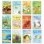 Usborne : My First Reading Level 1 Set of 12 Books หนังสือส่งเสริมการอ่าน ระดับ 1 : 12 เล่ม thumbnail 2