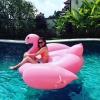 แพยางเป่าลม นกฟลามิงโก้สีชมพู Giant Flamingo Inflatable < พร้อมส่ง >