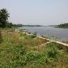 ที่ดินเปล่าถมแล้ว 5ไร่ ริมแม่น้ำท่าจีน บางยาง กระทุ่มแบน สมุทรสาคร