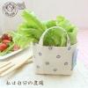 กระเป๋าปลูกผัก Vegetable Bag < พร้อมส่ง >
