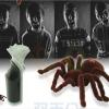 Spider แมงมุมบังคับ