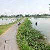 ที่ดิน เป็นบ่อปลา 122 ไร่ ถ.สายสุพรรณบุรี กฤษณา บางปลาม้า สุพรรณบุรี