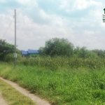 ที่ดินเปล่า138ตรว. ซอยชุมชนคลองเนินทราย ถนนพุทธมณฑลสาย4 ทวีวัฒนา กทม.
